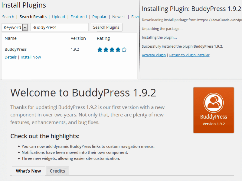 Install BuddyPress